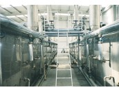 DWT Belt Dryer For Vegetable Dehydration